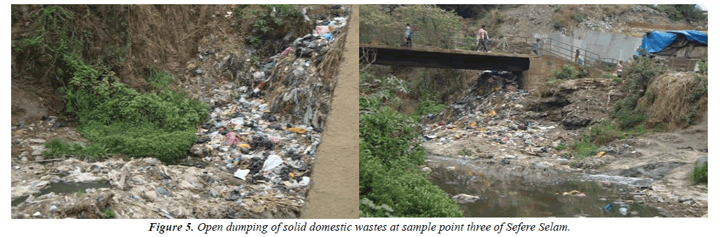 environmental-risk-domestic