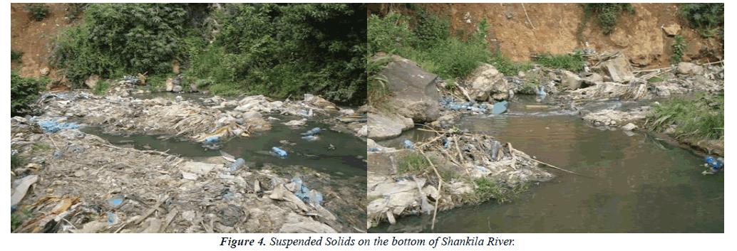 environmental-risk-solids