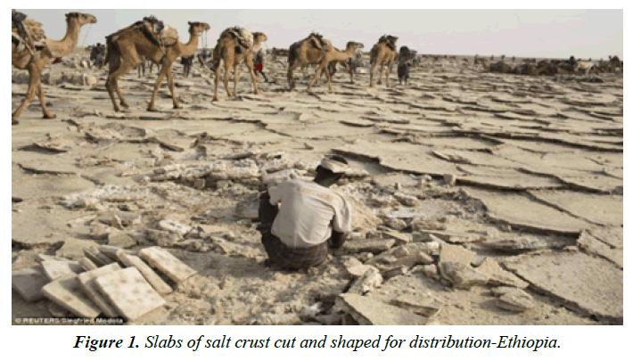 environmental-salt-crust-cut