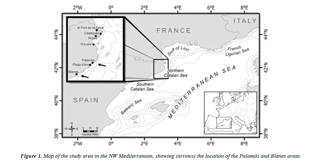 fisheries-research-showing-arrows