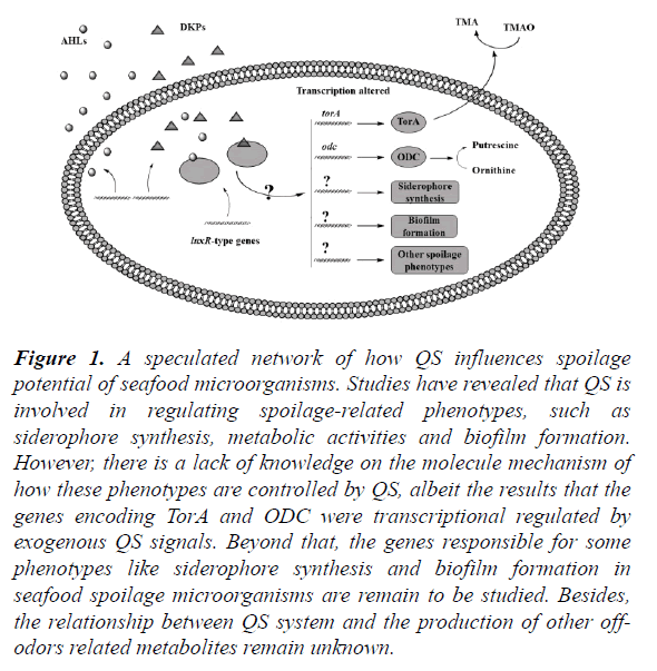 food-microbiology-seafood-microorganisms