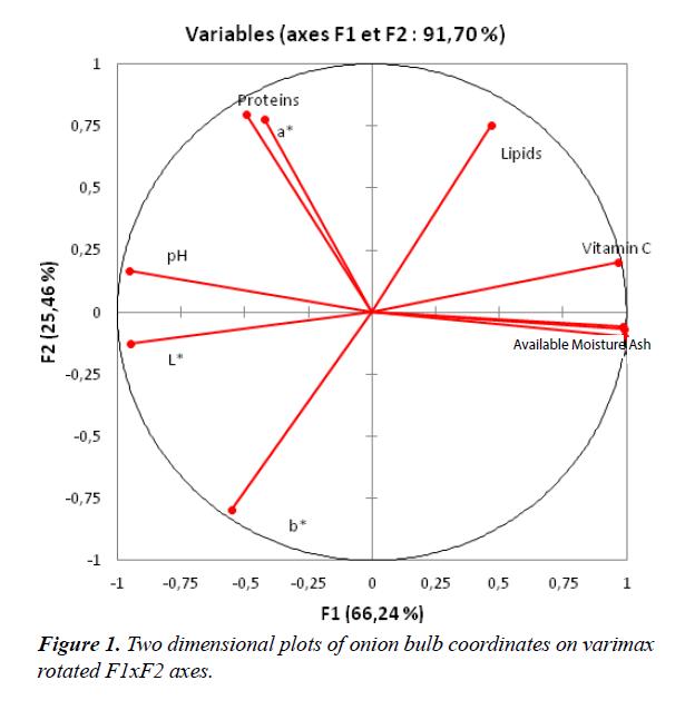 food-science-nutrition-bulb-coordinates