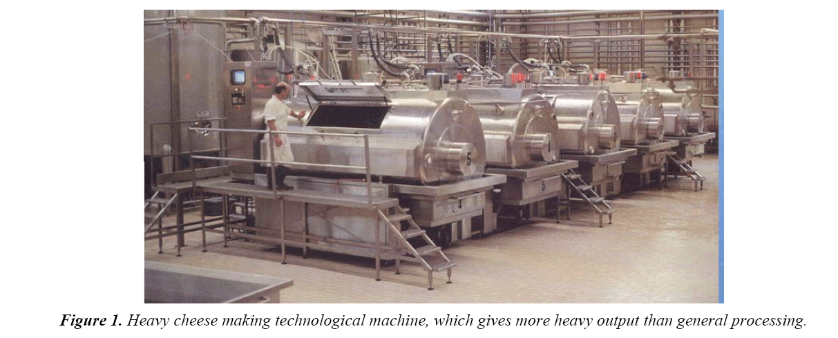 food-technology-cheese-making