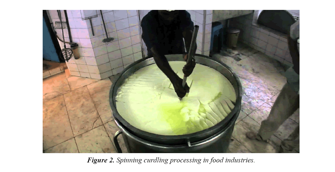 food-technology-curdling-processing