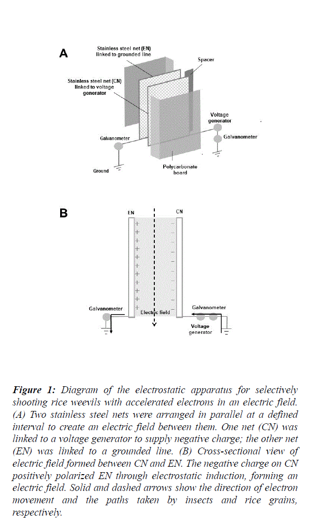 food-technology-electrostatic-apparatus