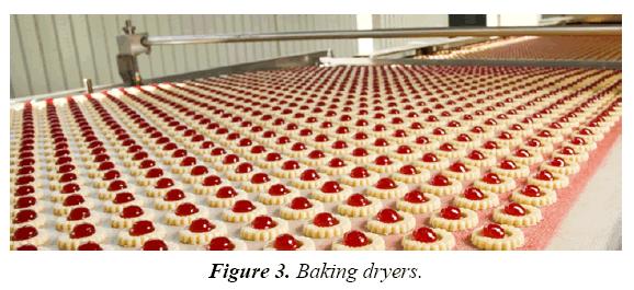food-technology-preservation-bakingdryers