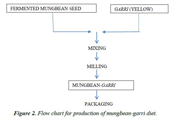 food-technology-preservation-mungbean-garri