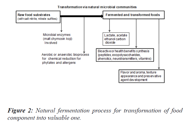 food-technology-preservation-natural-fermentation