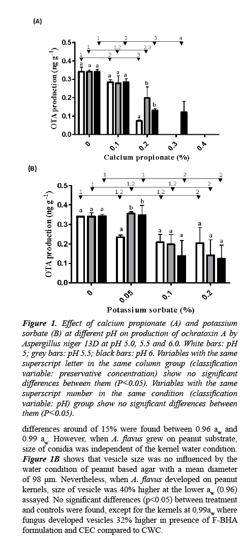 food-technology-production-of-ochratoxin