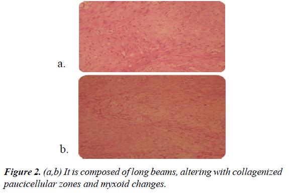 gastroenterology-digestive-diseases-long-beams
