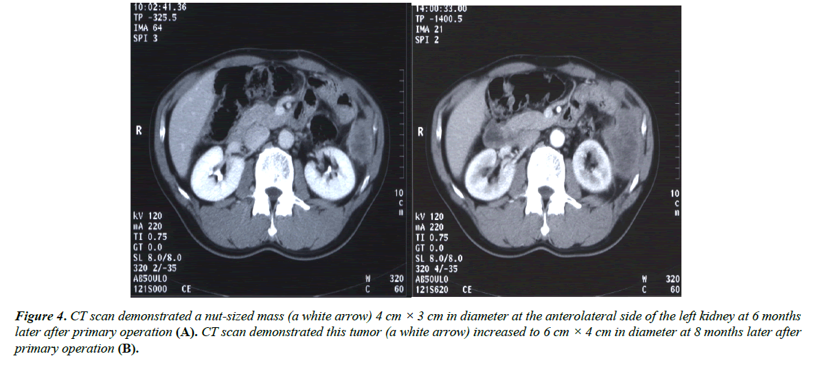 gastroenterology-digestive-diseases-nut-sized