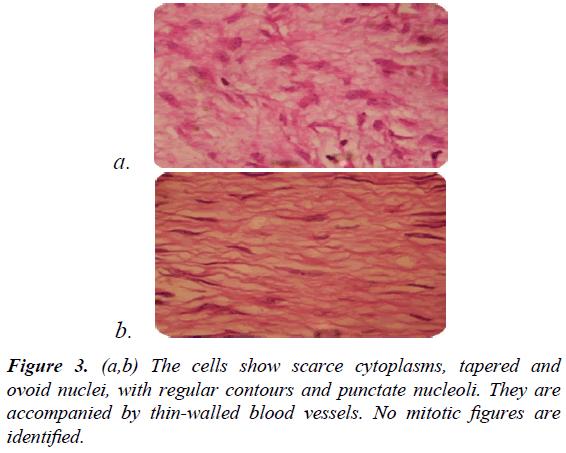 gastroenterology-digestive-diseases-scarce-cytoplasms