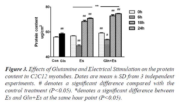 general-internal-medicine-Electrical-Stimulation
