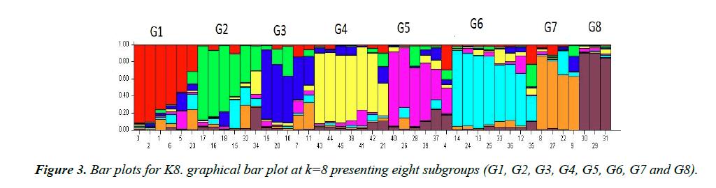 genetics-molecular-biology-subgroups