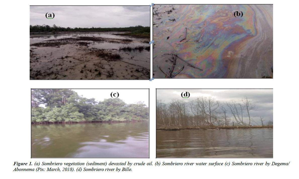 industrial-environmental-chemistry-sombriero-vegetation