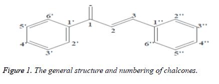 jbiopharm-structure