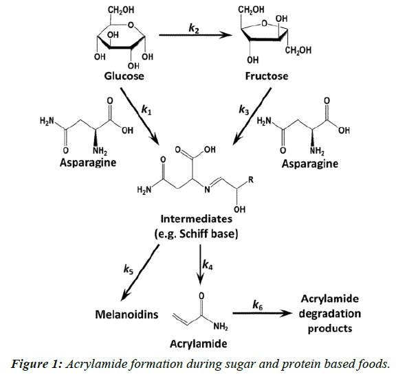 journal-biotechnology-phytochemistry-Acrylamide-formation