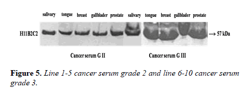 medical-research-serum
