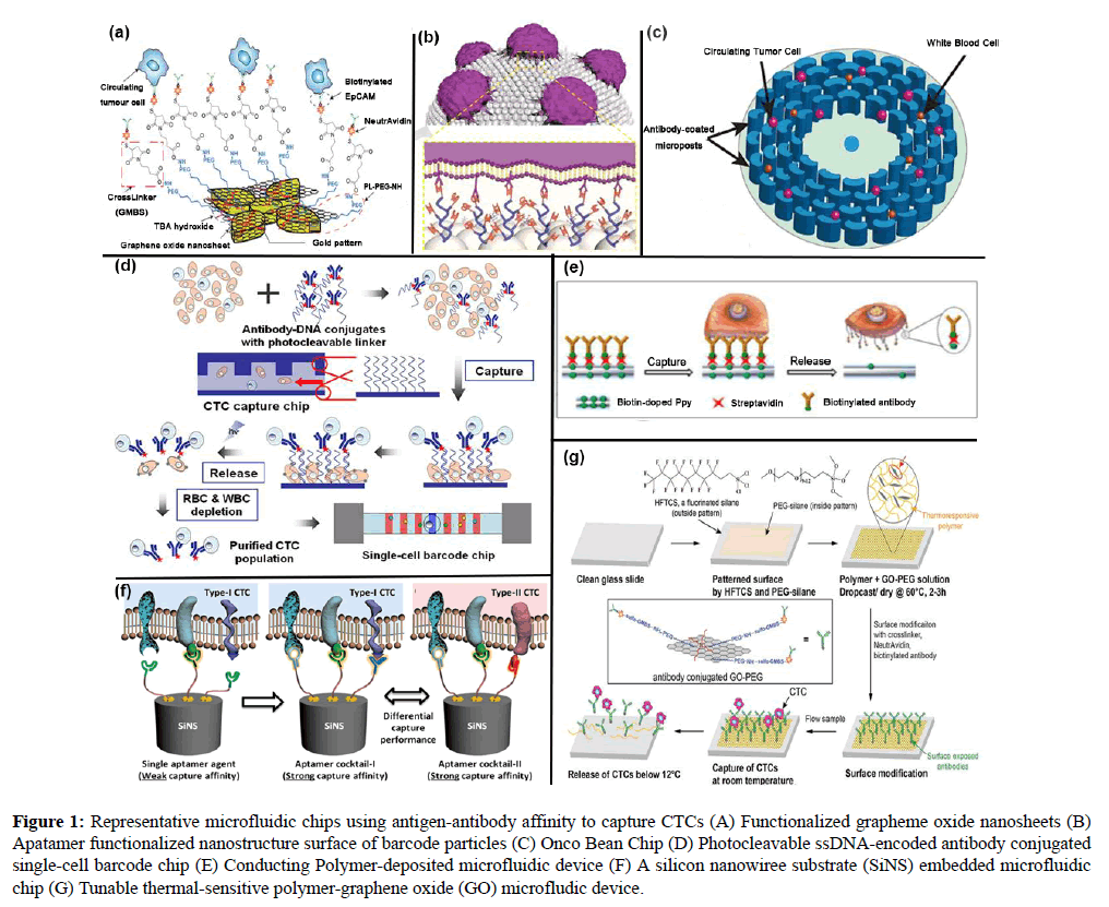 molecular-oncology-Representative-microfluidic