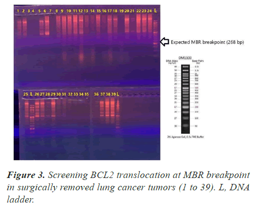 molecular-oncology-breakpoint