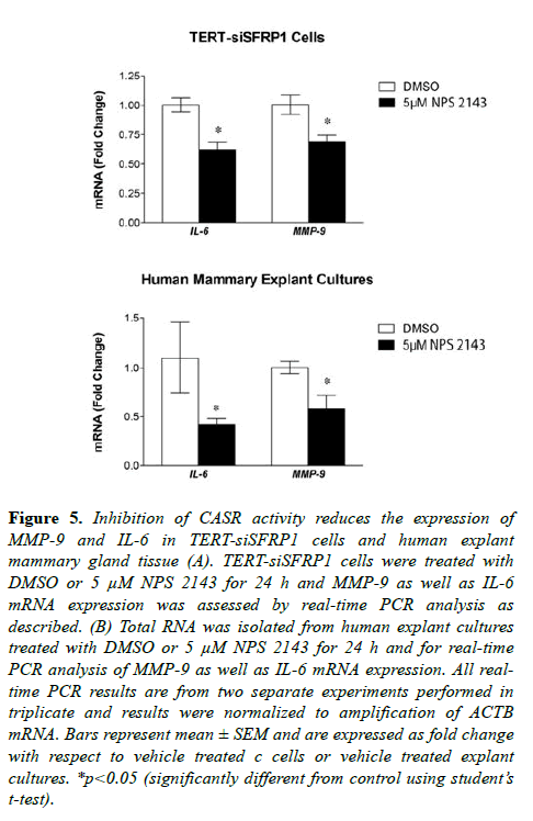 molecular-oncology-human-explant