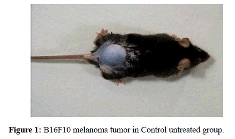 molecular-oncology-melanoma-tumor