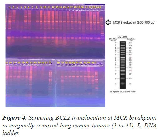molecular-oncology-translocation