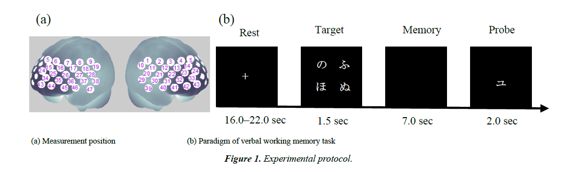 neuroinformatics-neuroimaging-experimental-protocol