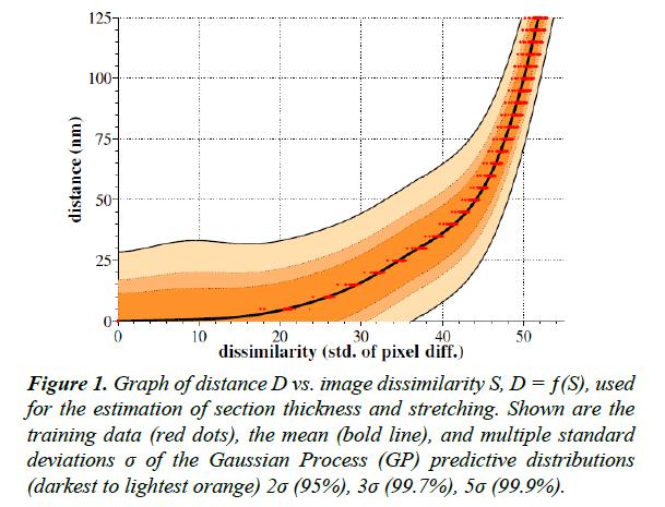 neuroinformatics-neuroimaging-image-dissimilarity