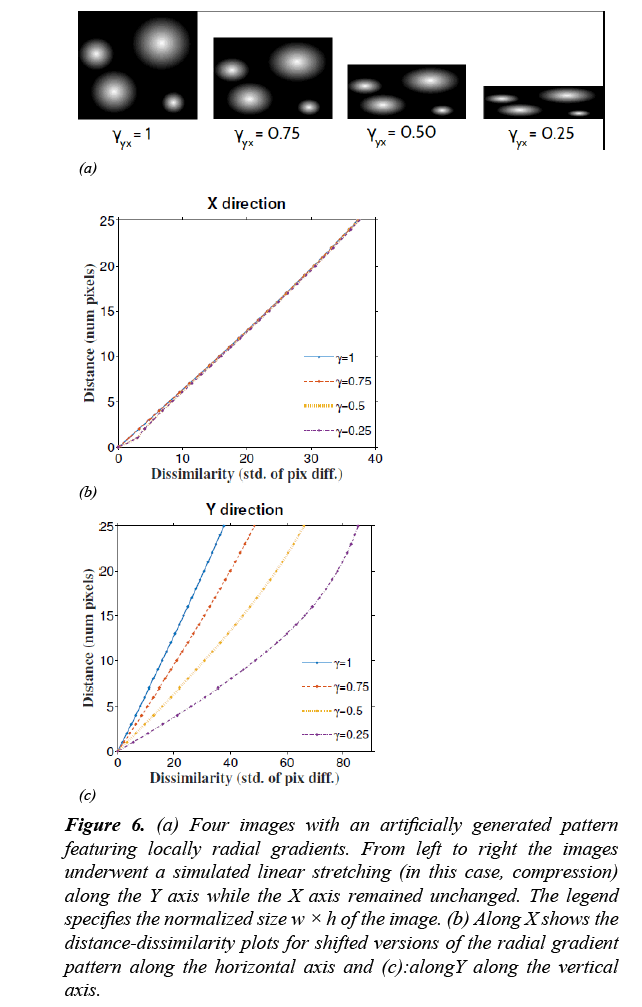 neuroinformatics-neuroimaging-radial-gradients