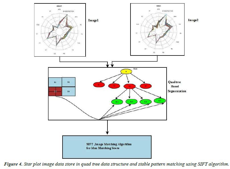 neurology-neurorehabilitation-research-Star-plot-image-data-store