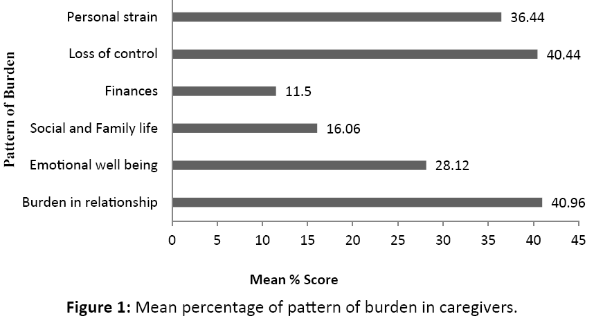 neurology-neurorehabilitation-research-pattern-burden-caregivers