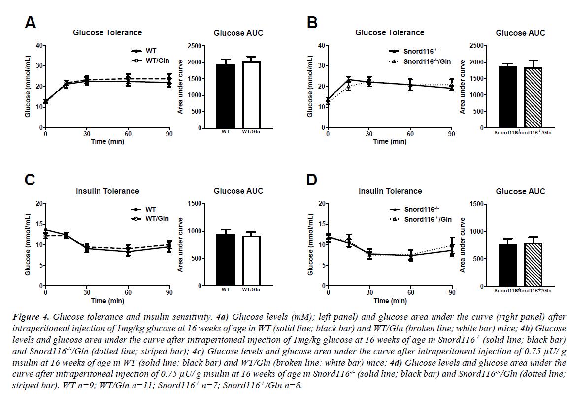 nutrition-human-health-Glucose-tolerance