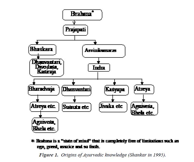 nutrition-human-health-Origins-Ayurvedic