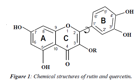 ophthalmic-eye-research-Chemical-structures