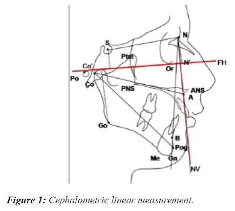 oral-medicine-toxicology-linear-measurement
