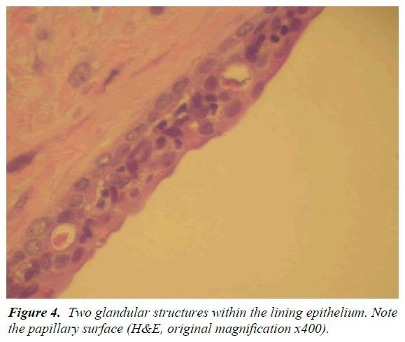 oral-medicine-toxicology-lining-epithelium