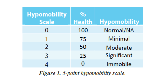 pain-management-therapy-hypomobility-scale