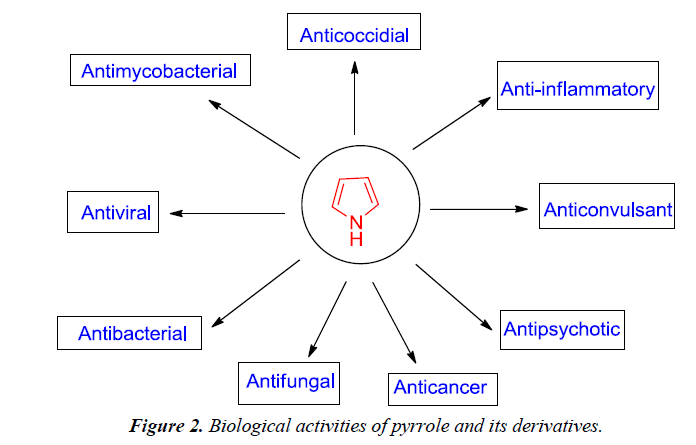 pharmaceutical-chemistry-chemical-science-activities-pyrrole