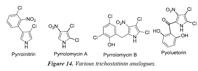 pharmaceutical-chemistry-chemical-science-trichostatinin-analogues