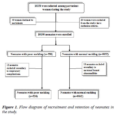 pregnancy-and-neonatal-medicine-neonates