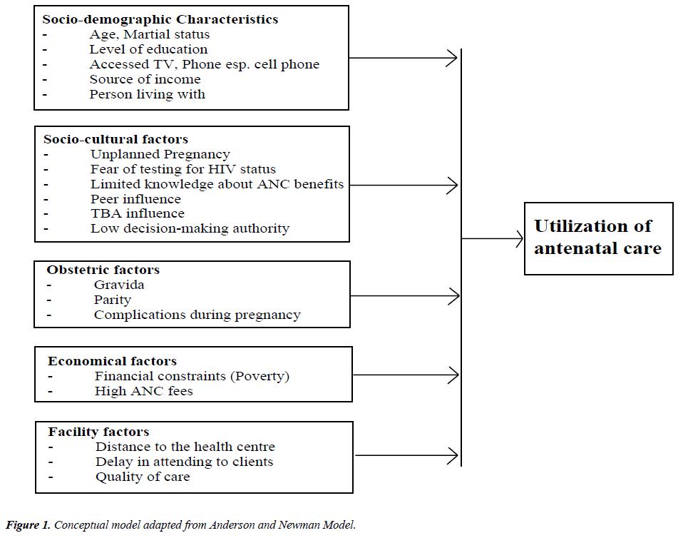 pregnancy-neonatal-medicine-Conceptual-model