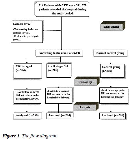pregnancy-neonatal-medicine-flow-diagram