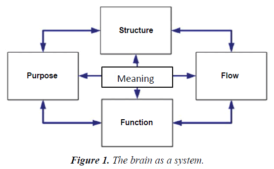 psychology-cognition-brain-system