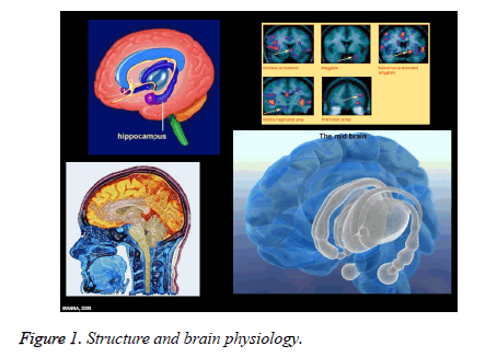 public-health-brain-physiology