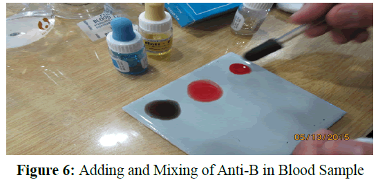 pure-applied-zoology-Adding-Mixing
