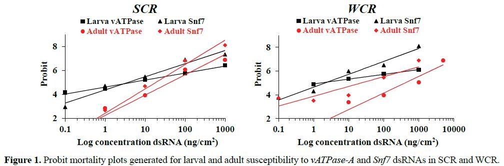 rnai-and-gene-silencing-Probit-mortality-plots