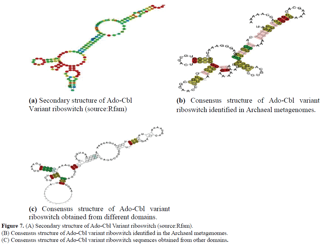 rnai-and-gene-silencing-secondary-structure