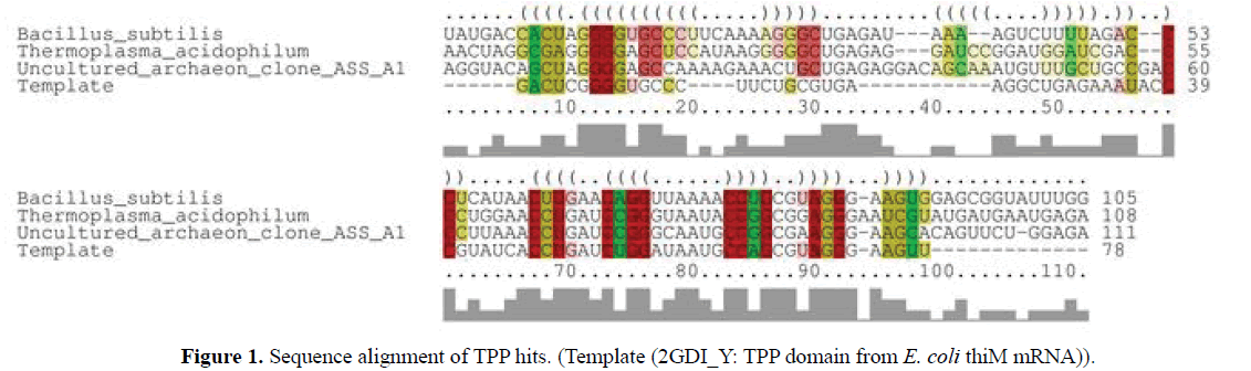 rnai-and-gene-silencing-sequence-alignment