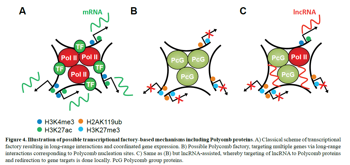 rnai-gene-silencing-factory-based